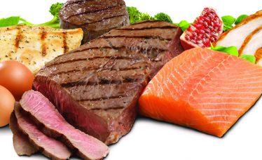 alimentazione proteica per palestra